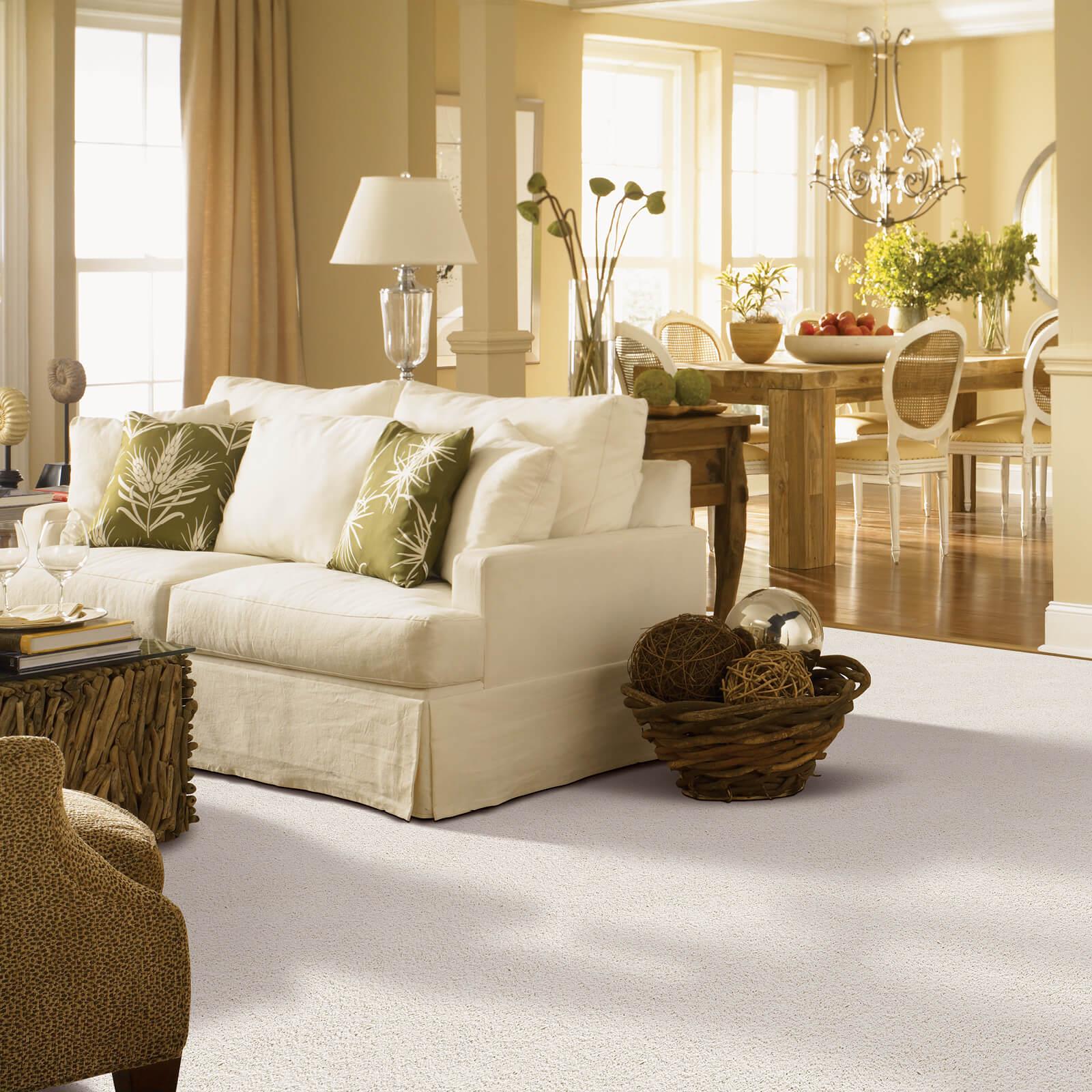 Gentle Approach | McSwain Carpet & Floors