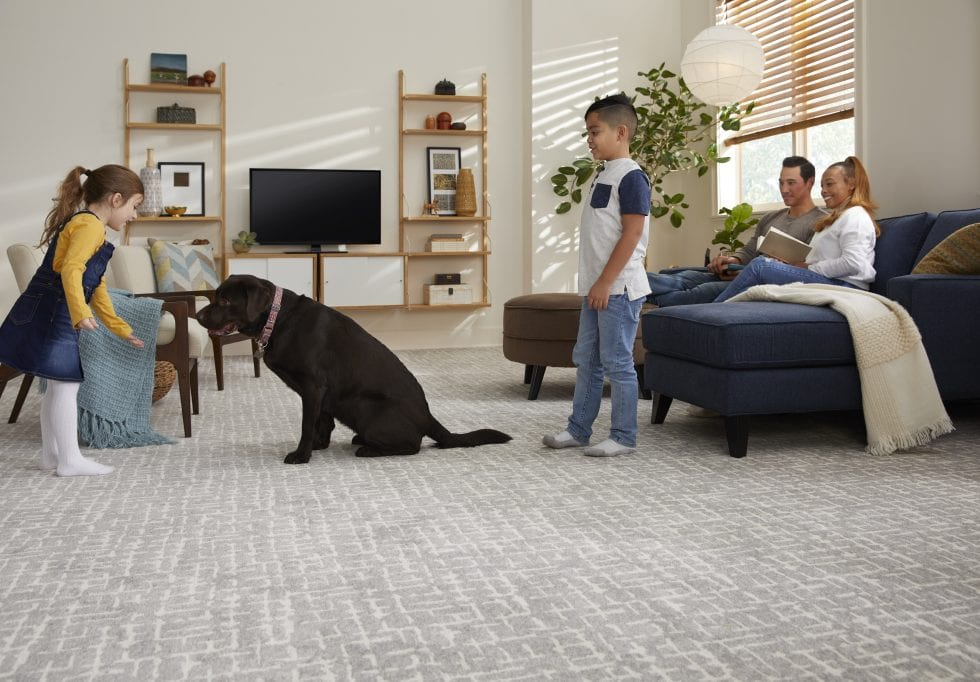 Our Favorite Carpet Patterns | McSwain Carpet & Floors