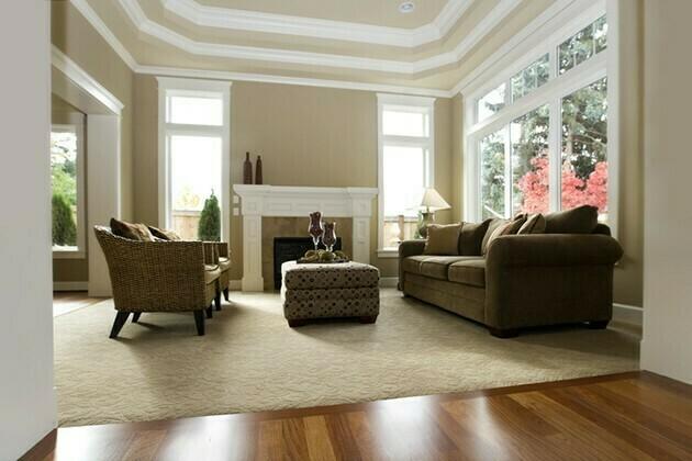 Interior architecture New Luxury Living Room modern | McSwain Carpet & Floors