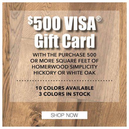 Apr -500 Visa gift card